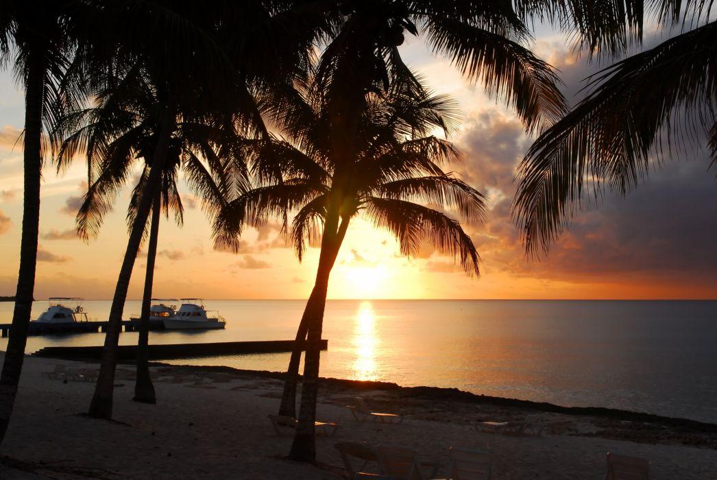 sunset beach seashore paradise tropical sand sea beach sunset beach sand palm trees wallpaper