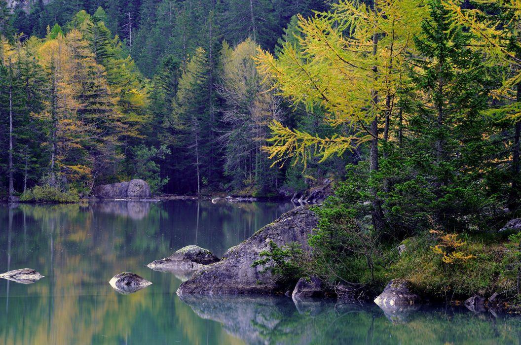 mountains forest trees autumn lake stones wallpaper