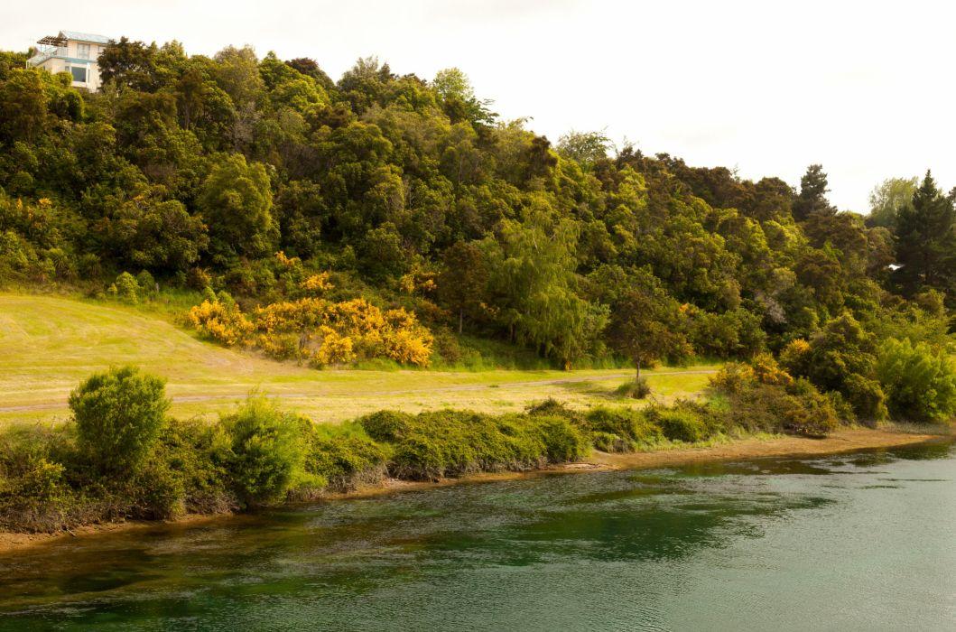 New Zealand Waikato River river shore slope road wallpaper