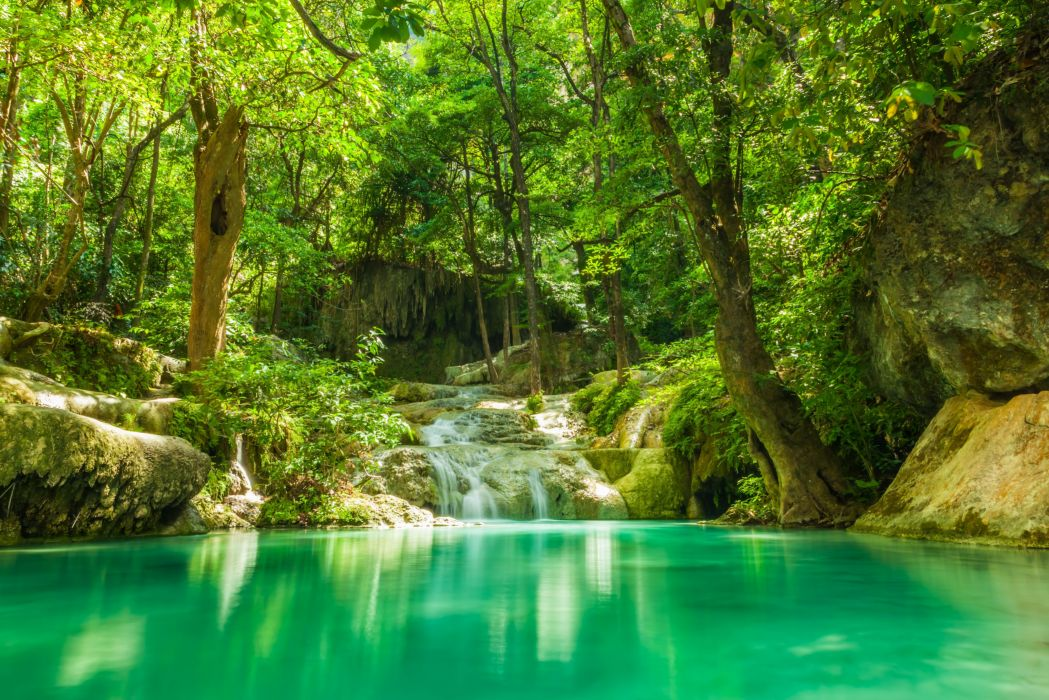 summer forest lake stream waterfall rocks trees greenery tropical jungle wallpaper