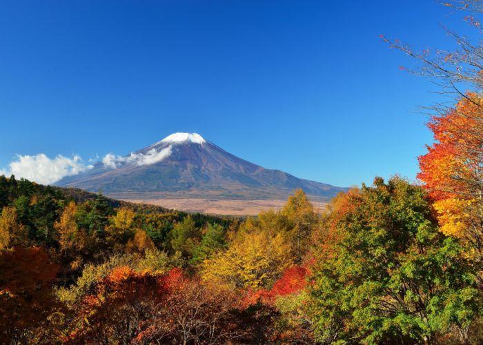Japan Mount Fuji sky trees leaves autumn wallpaper
