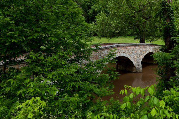trees bridge landscape river forest wallpaper