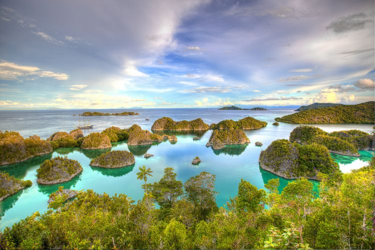 Indonesia Besir West Papua tropics sea islands wallpaper