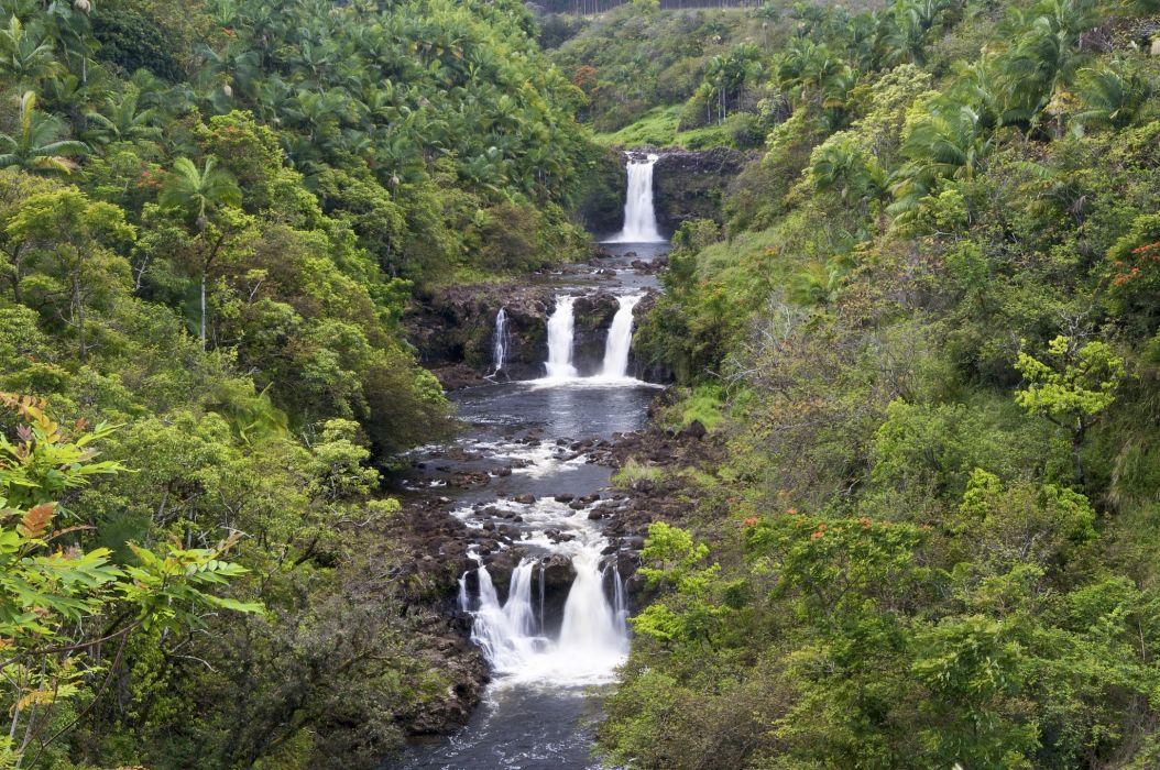 Hawaii forest river waterfall cascade wallpaper