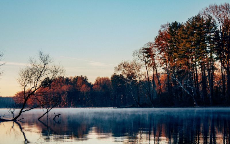 lake surface mist forest trees morning late autumn wallpaper
