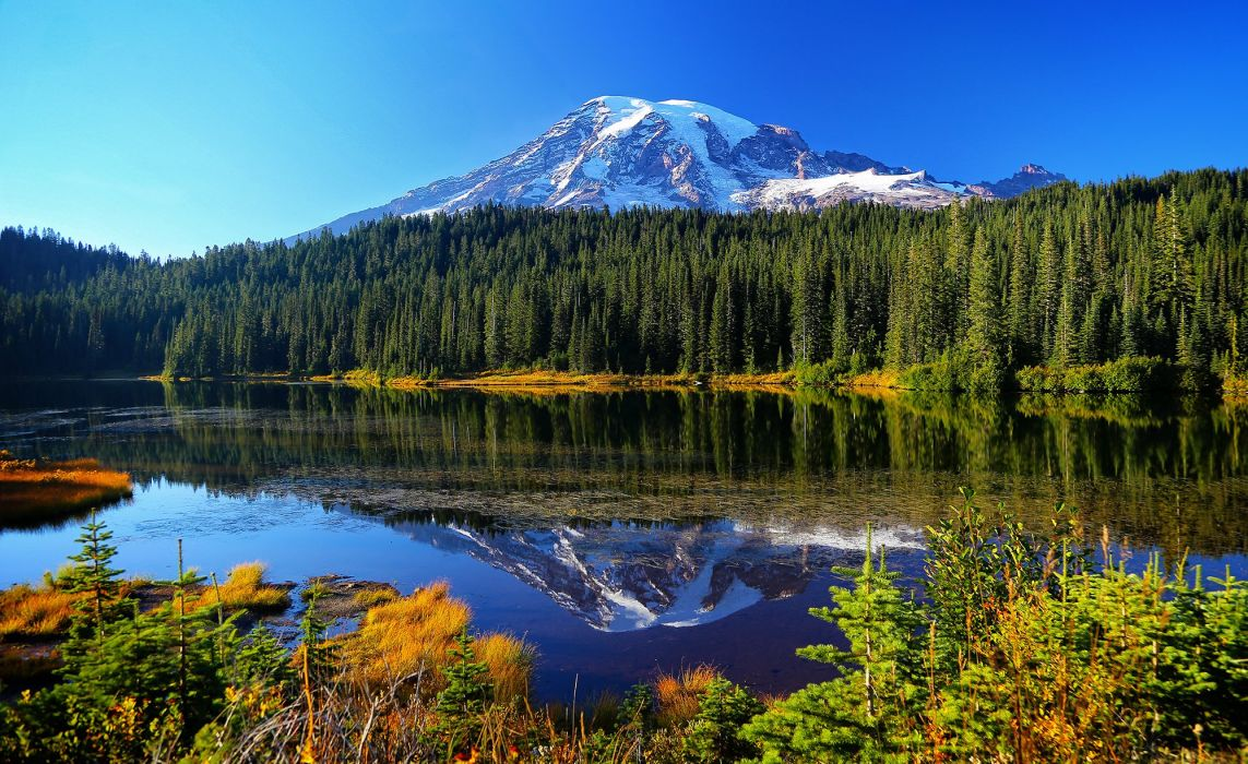 Mount Rainier National Park Reflection Lake forest lake mountains water reflection trees autumn wallpaper