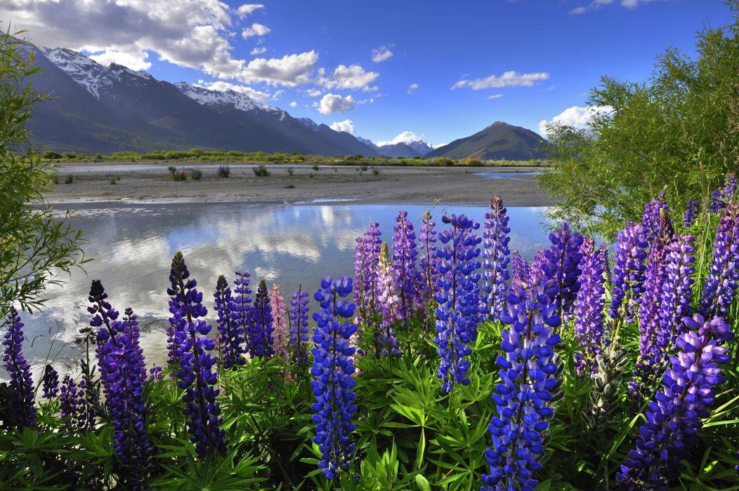New Zealand mountains clouds lake lupine wallpaper
