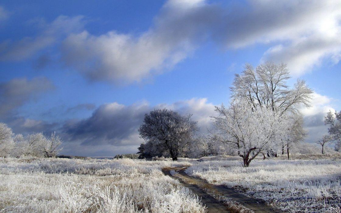 winter nature landscape wallpaper