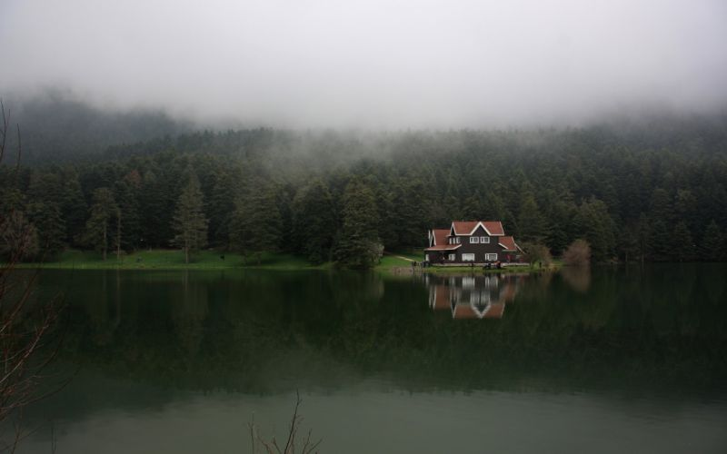 house lake nature fog wallpaper