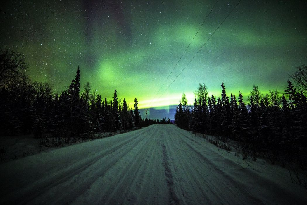 Northern Lights Road Pine wallpaper