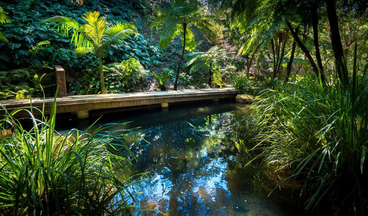 Australia Parks Pond Shrubs Brisbane Queensland Nature wallpaper