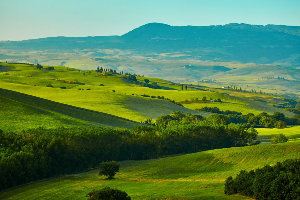 Italy Scenery Fields Tuscany hills Nature wallpaper