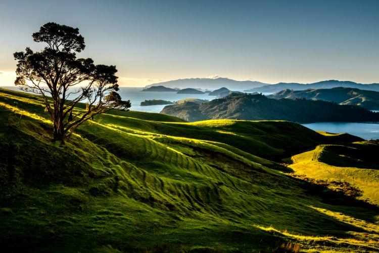 New Zealand Scenery Mountains Lake Trees Coromandel Nature wallpaper
