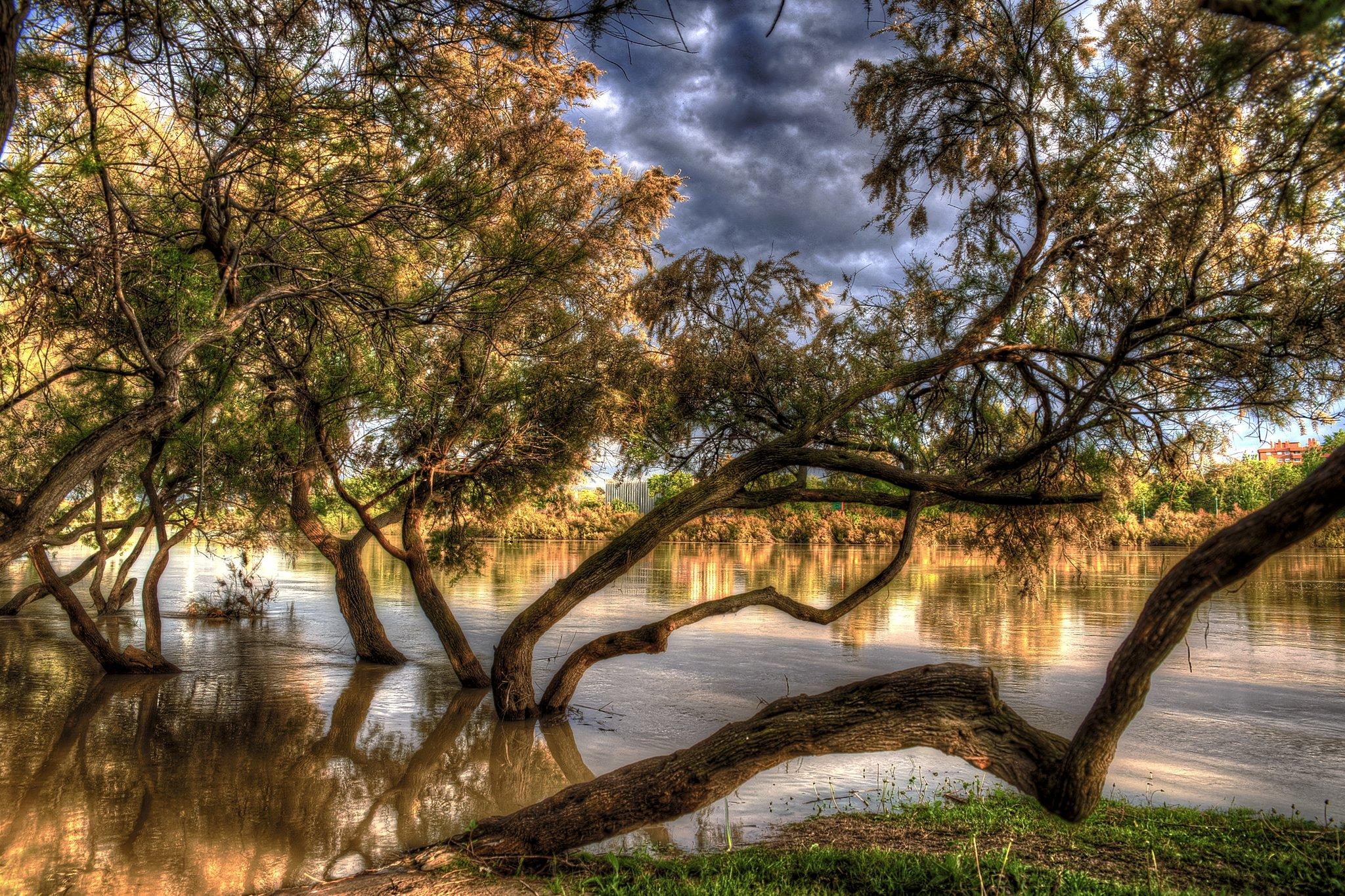 природа HDR река деревья  № 257364 бесплатно