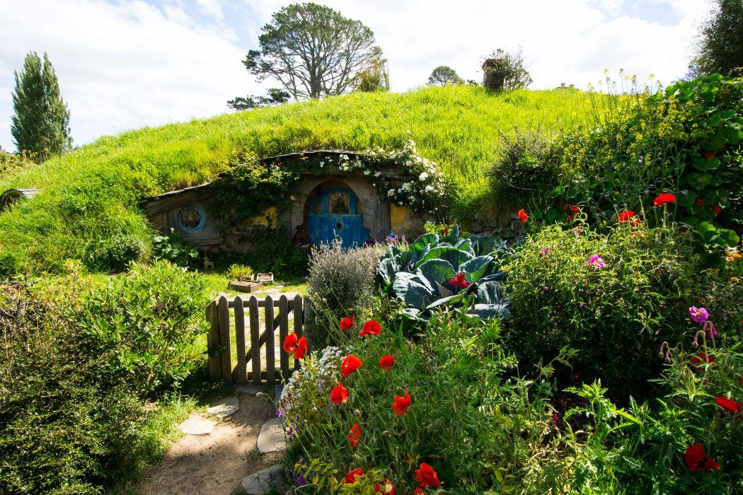 New Zealand Parks Houses Poppies Shrubs Grass Matamata Hobbiton Park Nature wallpaper