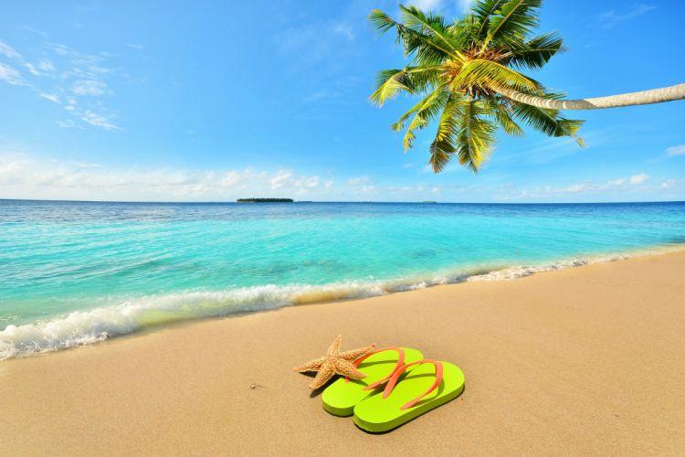 Sea Sky Beach Palma Nature wallpaper