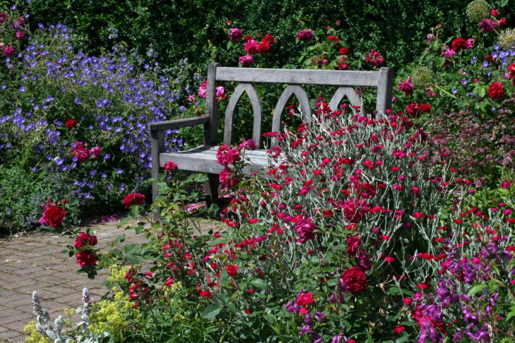 United Kingdom Gardens Roses Shrubs Bench Garden Rosemoor Nature wallpaper