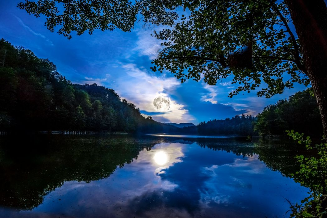Germany Scenery Rivers Forests Sky Night Branches Mainz Nature wallpaper