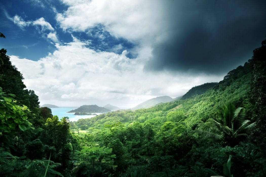 Tropics Scenery Forests Clouds Jungle Nature wallpaper
