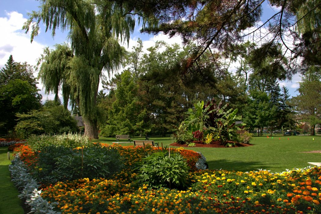 USA Gardens Tagetes Lawn Trees Shrubs Toronto Ontario Botanical Garden Nature wallpaper