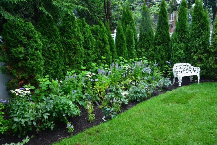 USA Parks Shrubs Bench Grass Fir Detroit Garden Nature wallpaper
