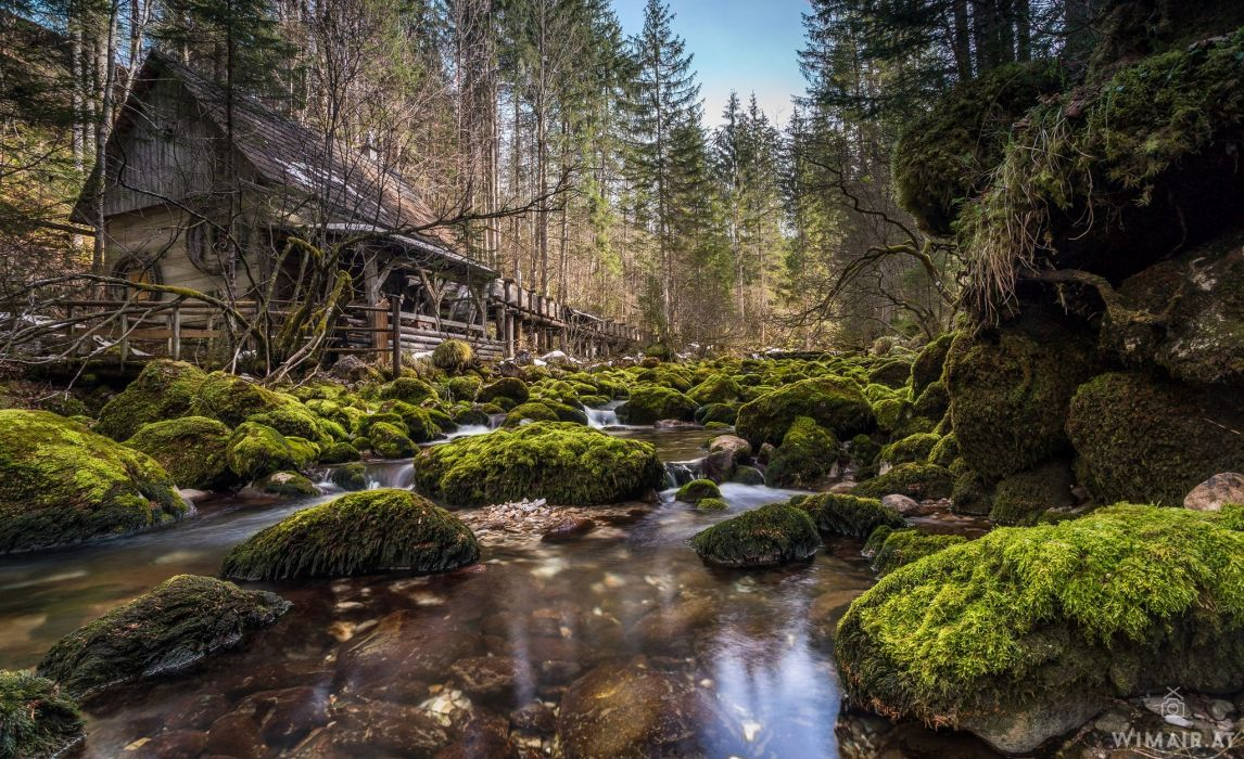 Austria Forests Houses Stones Moss Stream Nature wallpaper