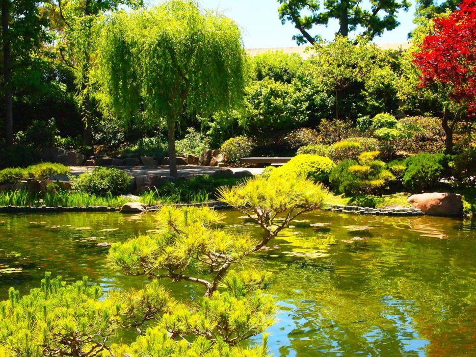 USA Gardens Pond California Trees Shrubs Earl Burns Miller Japanese Garden Nature wallpaper