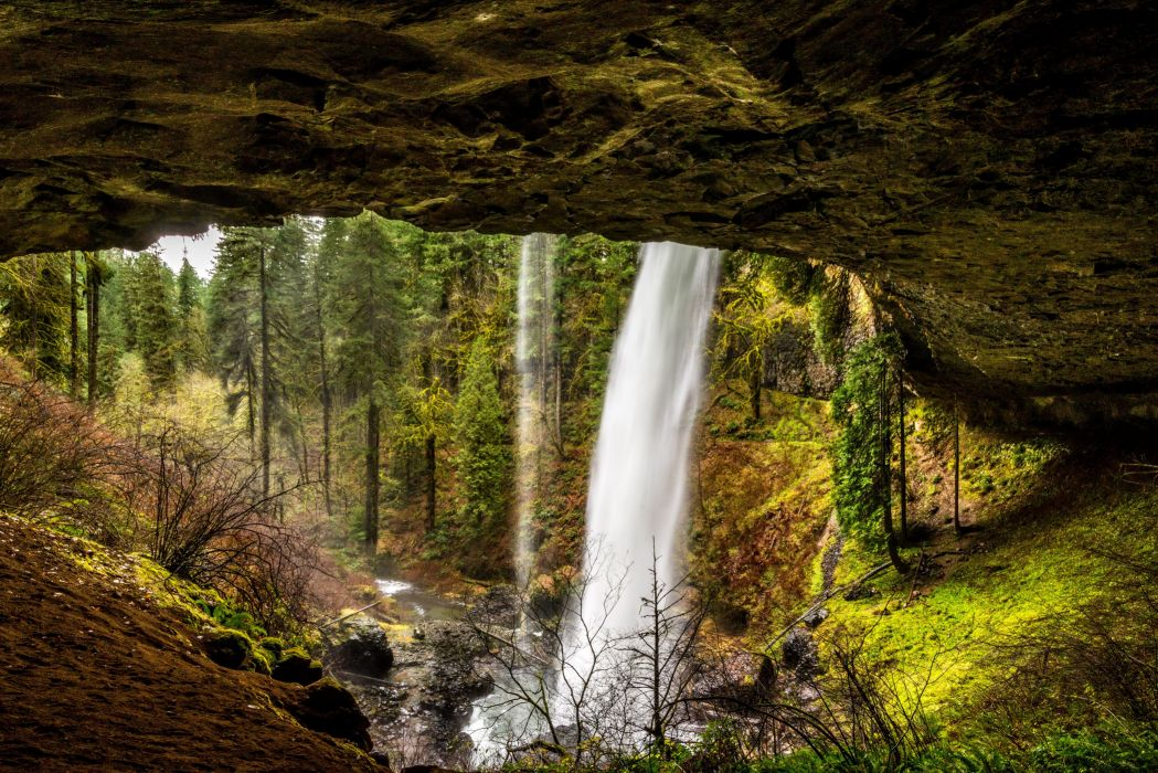 USA Parks Waterfalls Forests Silver Falls State Park Nature wallpaper