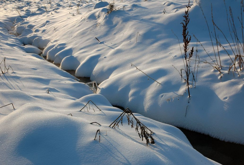 Closeup Snow Nature wallpaper