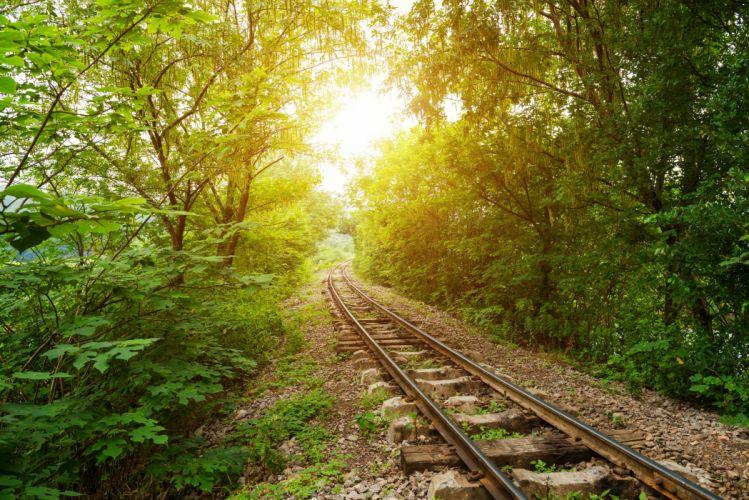Railroads Trees Rays of light Nature wallpaper