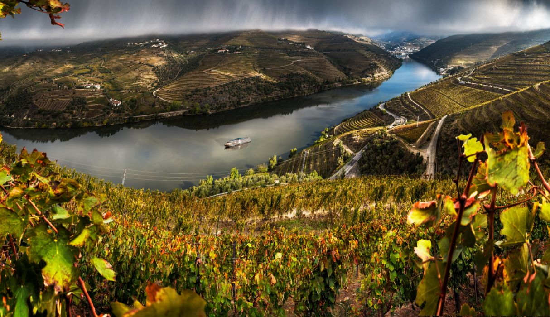 Portugal Scenery Rivers Fields Valenca Do Douro Nature wallpaper