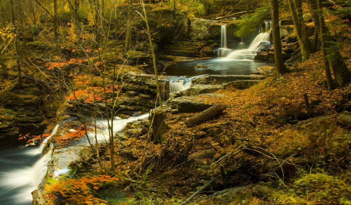 Forests Waterfalls Autumn Stream Nature wallpaper