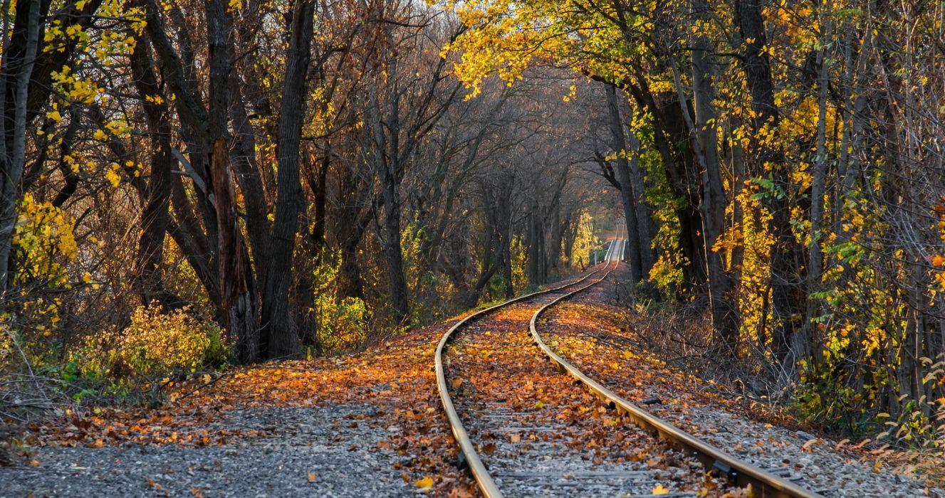 Railroads Autumn Nature wallpaper