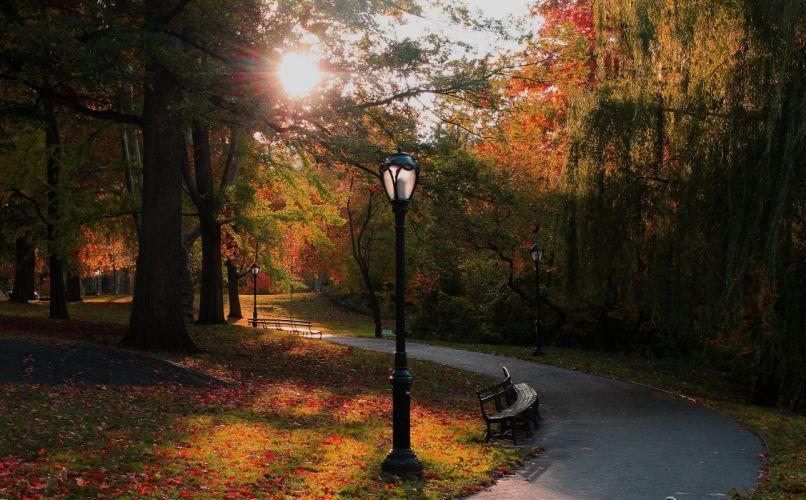 USA Parks Autumn New York City Trees Street lights Bench Nature wallpaper
