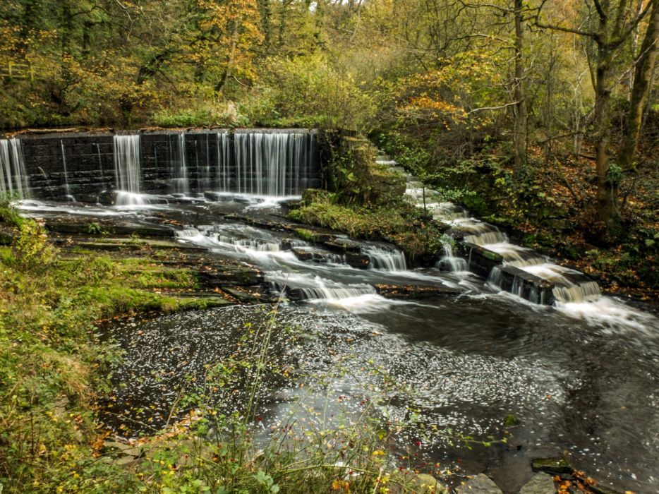 England Parks Forests Waterfalls Stream Yarrow Valley Country Park Nature wallpaper
