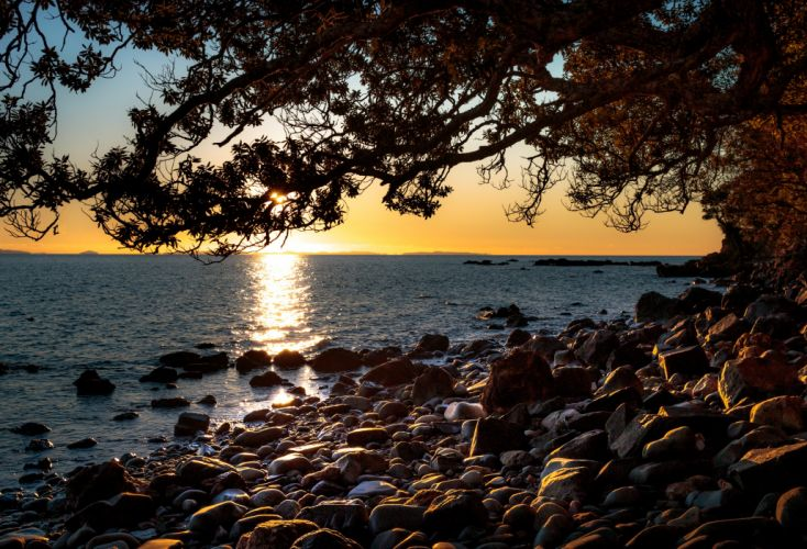 New Zealand Sunrises and sunsets Stones Sea Branches Ruamahunga Bay Nature wallpaper