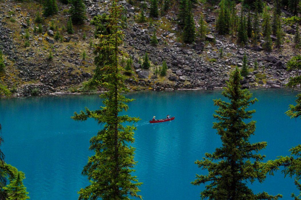 Canada Lake Parks Banff Fir Moraine Lake Nature wallpaper