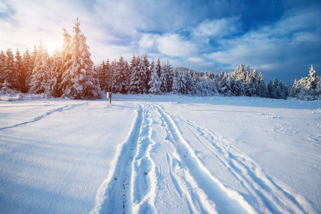 Scenery Winter Forests Sky Snow Nature wallpaper