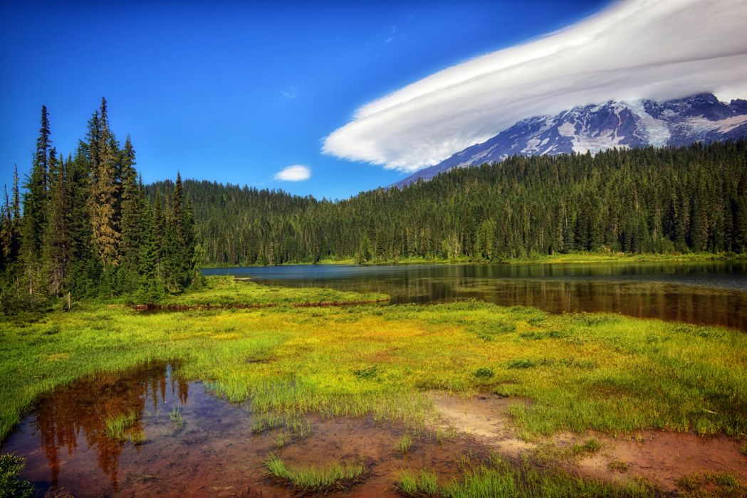 USA Parks Scenery Forests Lake Grass Mount Rainier National Park Nature wallpaper