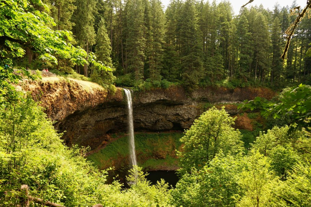 USA Parks Waterfalls Forests Canyon Silver Falls State Park Nature wallpapers wallpaper