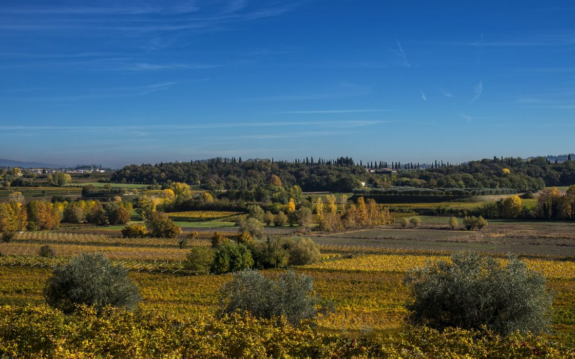 Scenery Italy Fields Sky Shrubs Lazise Veneto Nature wallpaper