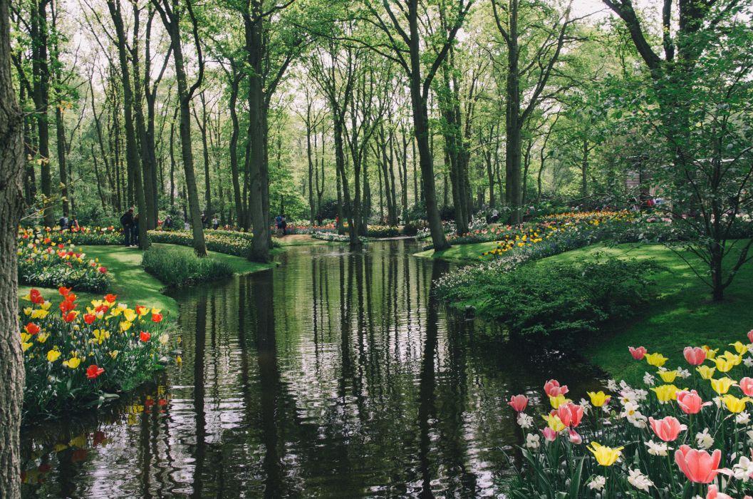 Pond Gardens Tulips Netherlands Trees Keukenhof Nature wallpaper