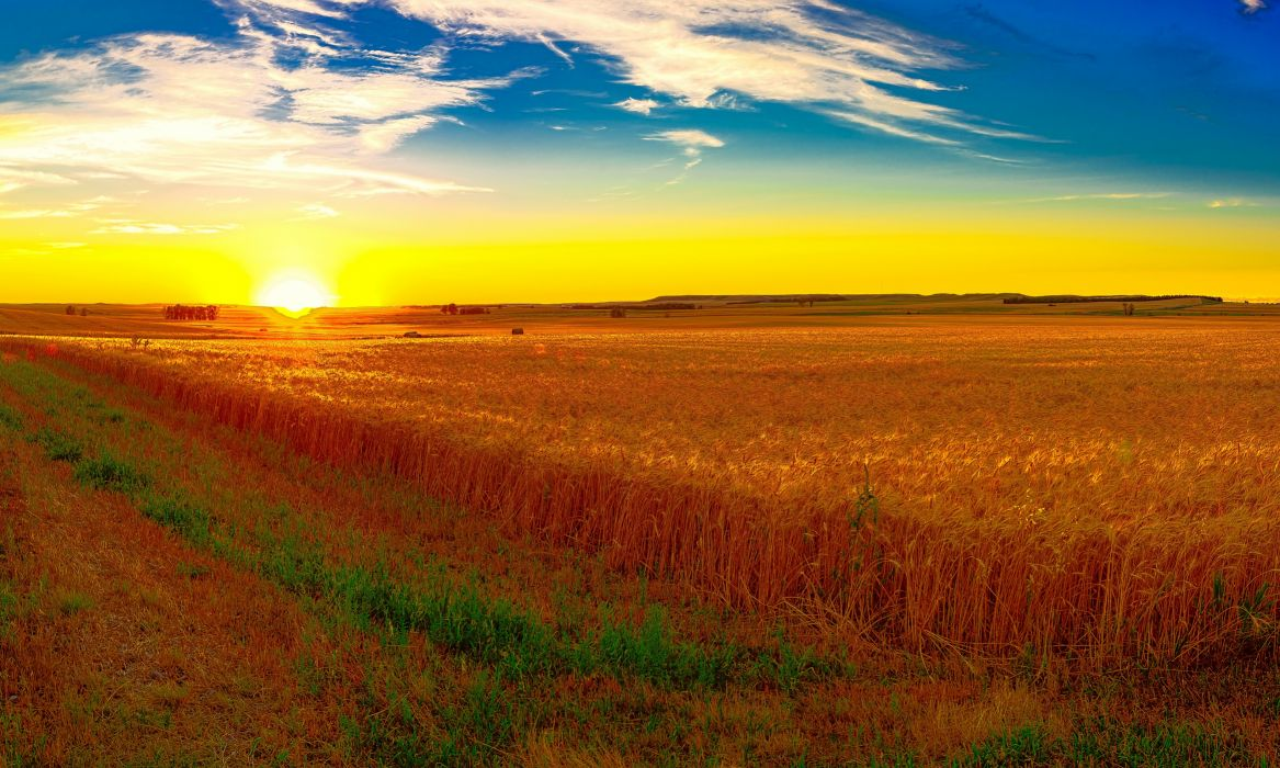 Scenery Fields Sunrises and sunsets Sky Nature wallpaper
