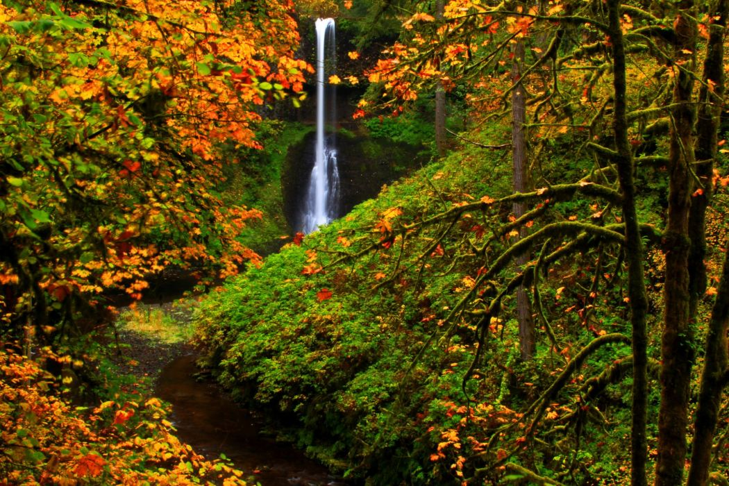 USA Parks Autumn Waterfalls Silver Falls State Park Nature wallpaper