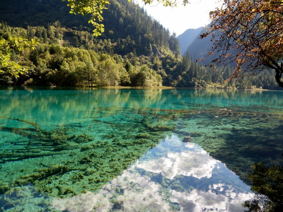 China Scenery Parks Lake Forests Jiuzhaigou National Park Nature wallpaper