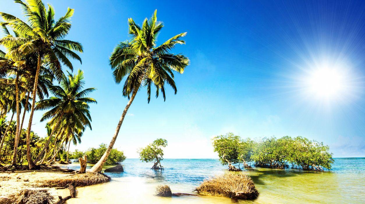 Sky Tropics Sea Palma Trees Nature wallpaper