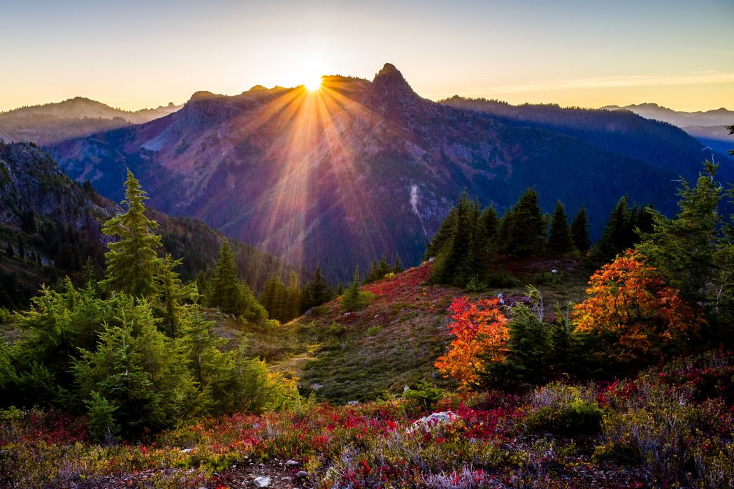 USA Parks Mountains Sunrises and sunsets Fir Shrubs Rays of light Sun Washington State Park Nature wallpaper