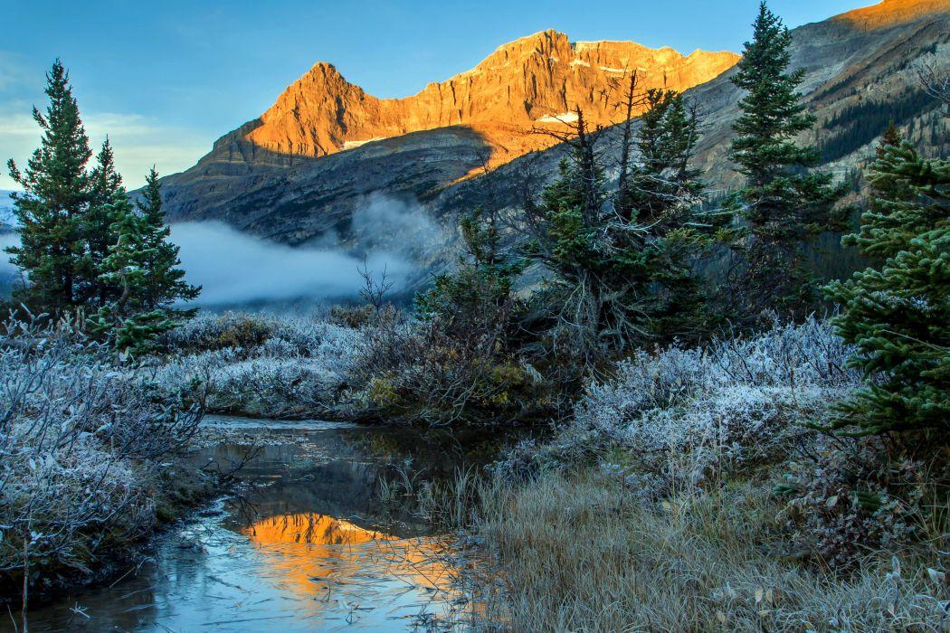 Canada Parks Mountains Winter Scenery Banff Fir Stream Nature wallpaper