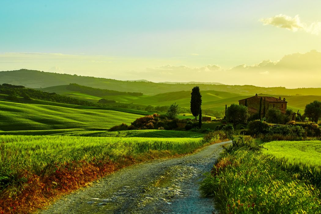 Italy Scenery Fields Grasslands Roads Tuscany hills Nature wallpaper