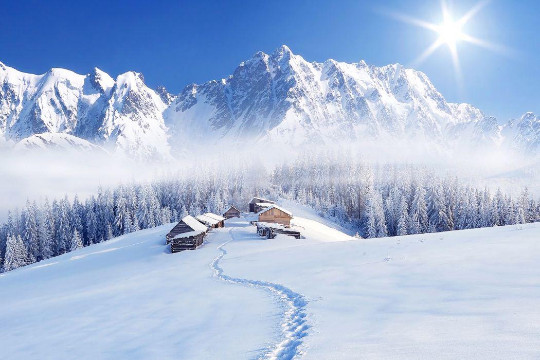 Winter Mountains Snow Fir Rays of light Nature wallpaper